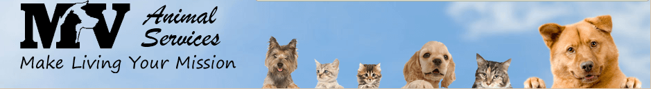 Mission Viejo Animal Licensing